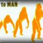 DOCUMENTÁRIO :: Ape to Man (Science Net - YouTube) >> https://www.youtube.com/watch?v=5sMqFivWTmk