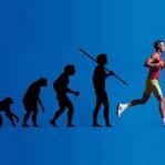 LIVRO :: Homo sapiens tecnologicus IMichel Puech - Mélétè) >> https://www.amazon.fr/Technologicus-Philosophie-technologie-contemporaine-philosophie/dp/2746503573