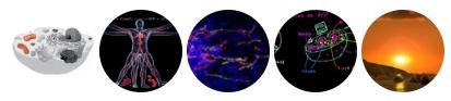 20180503_mltmd_mitocondrias