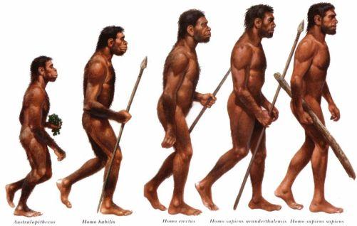 20180712_estudopratico_homo-sapiens-sapiens