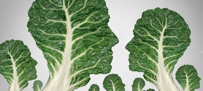 Perspectiva integrada para a sustentabilidade? Não deixe o corpo defora