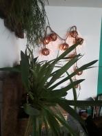 lounge_pverde_jan2019