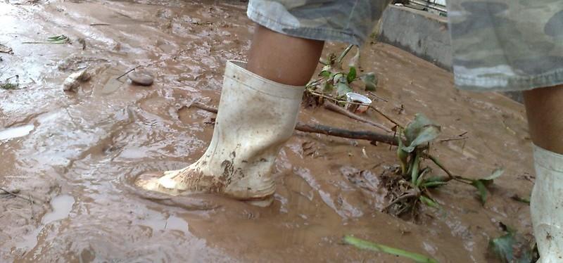 Chuvas que destroem, chuvas queeducam